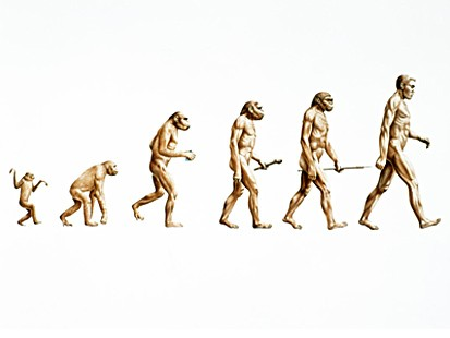 Be Like Evolution